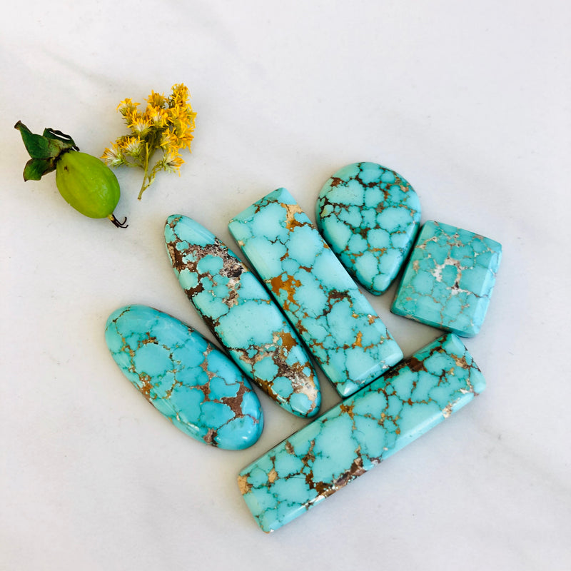 Namtso Lake Turquoise Various Shapes, set of 6