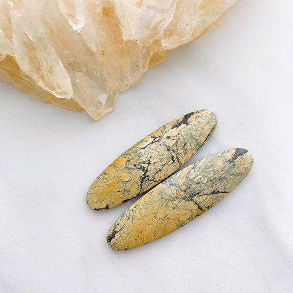 Large Earth Brown Surfboard Golden Birch, Set of 2 Background