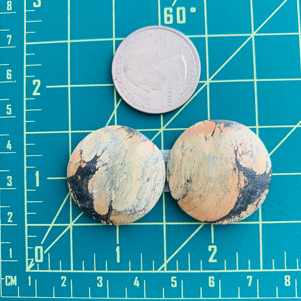 Large Earth Brown Round Golden Birch, Set of 2 Dimensions