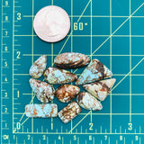 Small Mix Wild Horse Turquoise, Set of 10