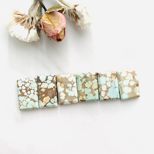 Medium Pale Brown Bar Sand Hill Turquoise, Set of 6 Background
