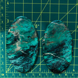Giant Oval Crescent Lake Variscite, Set of 2