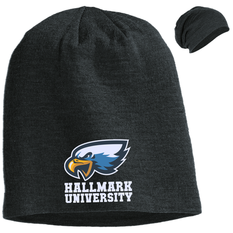 HU Eagles District Slouch Beanie