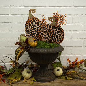 Leopard Pumpkins, Mini, S/2