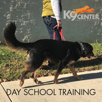 Day School Training Program - Instructors: Susie Stout, Ace Russell