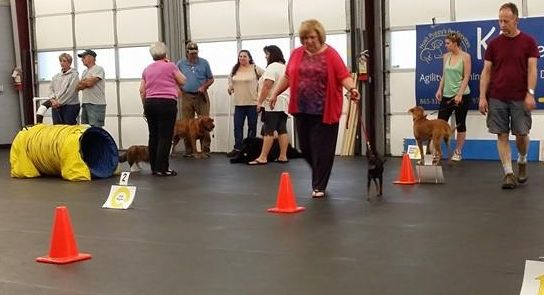 TBD - FUNdamental Dog Sports Sampler Class - Instructors: Ace Russell, Susie Stout