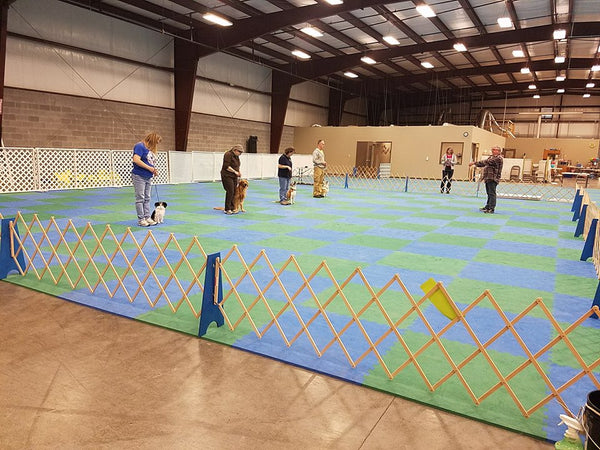Obedience/Rally Run Thru's