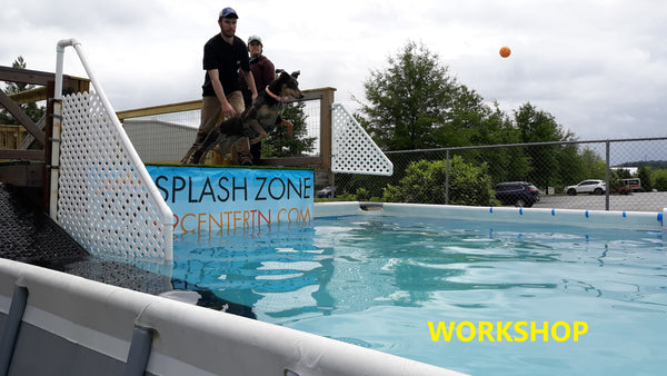 POOL: Dock Diving Workshop Sept 2020