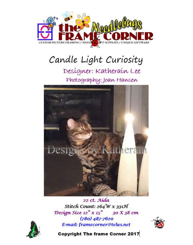 Candle Light Curiosity