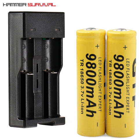 18560 Batteries + Charger