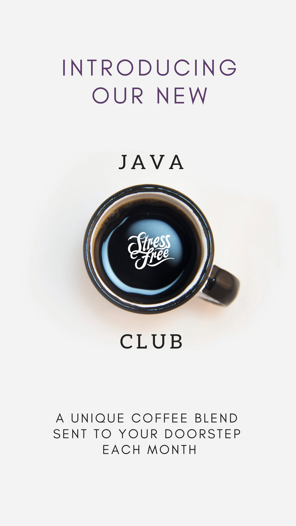 Stress-Free Java Club - Monthly Program
