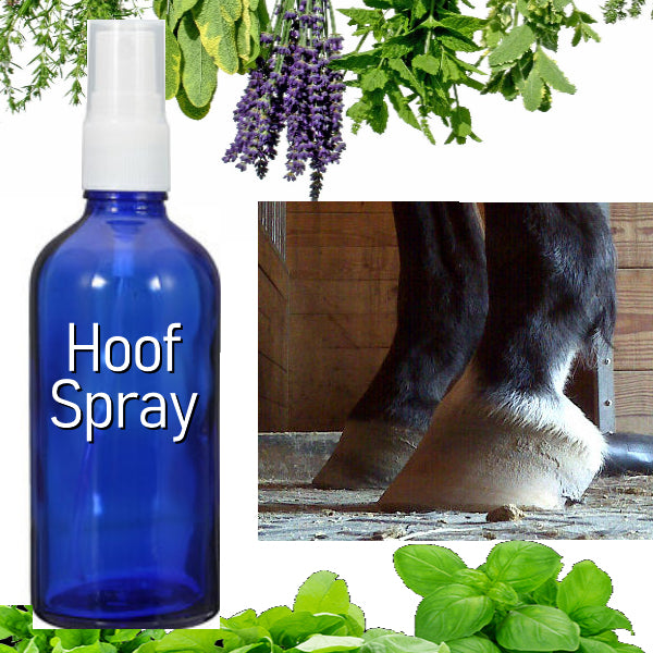 Trimming Hooves, Shedding Ponies and Essential Oils