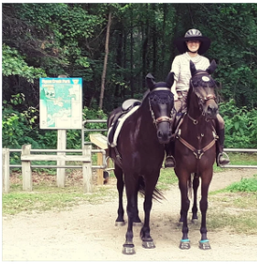 "Lola the Retired Racehorse Chapter 8 ""Finding That Happy Place"""