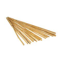 Bamboo 2' Stakes, 25 Pack