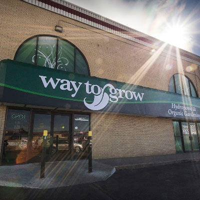 Way to Grow Denver Storefront