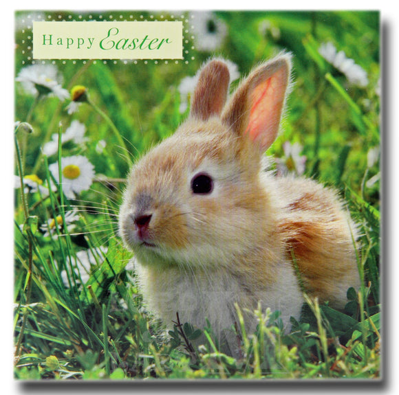 13cm - Happy Easter - Bunny Rabbit