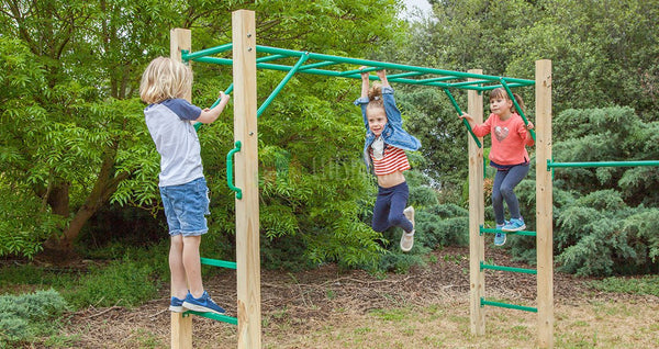 Amazon Monkey Bar Set - Lifespan Kids - buy online Happy Active Kids