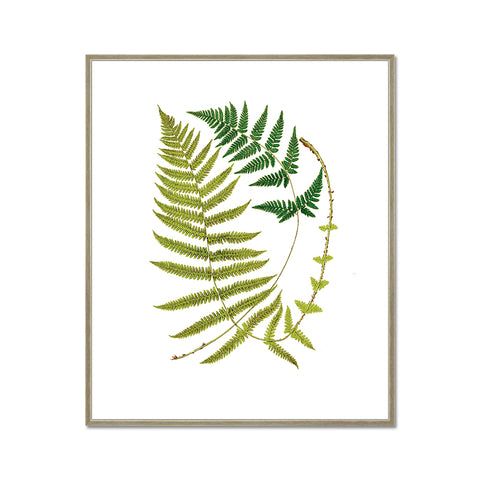 Green Leaves Canvas Print, Plant Art Print with Floater Frame