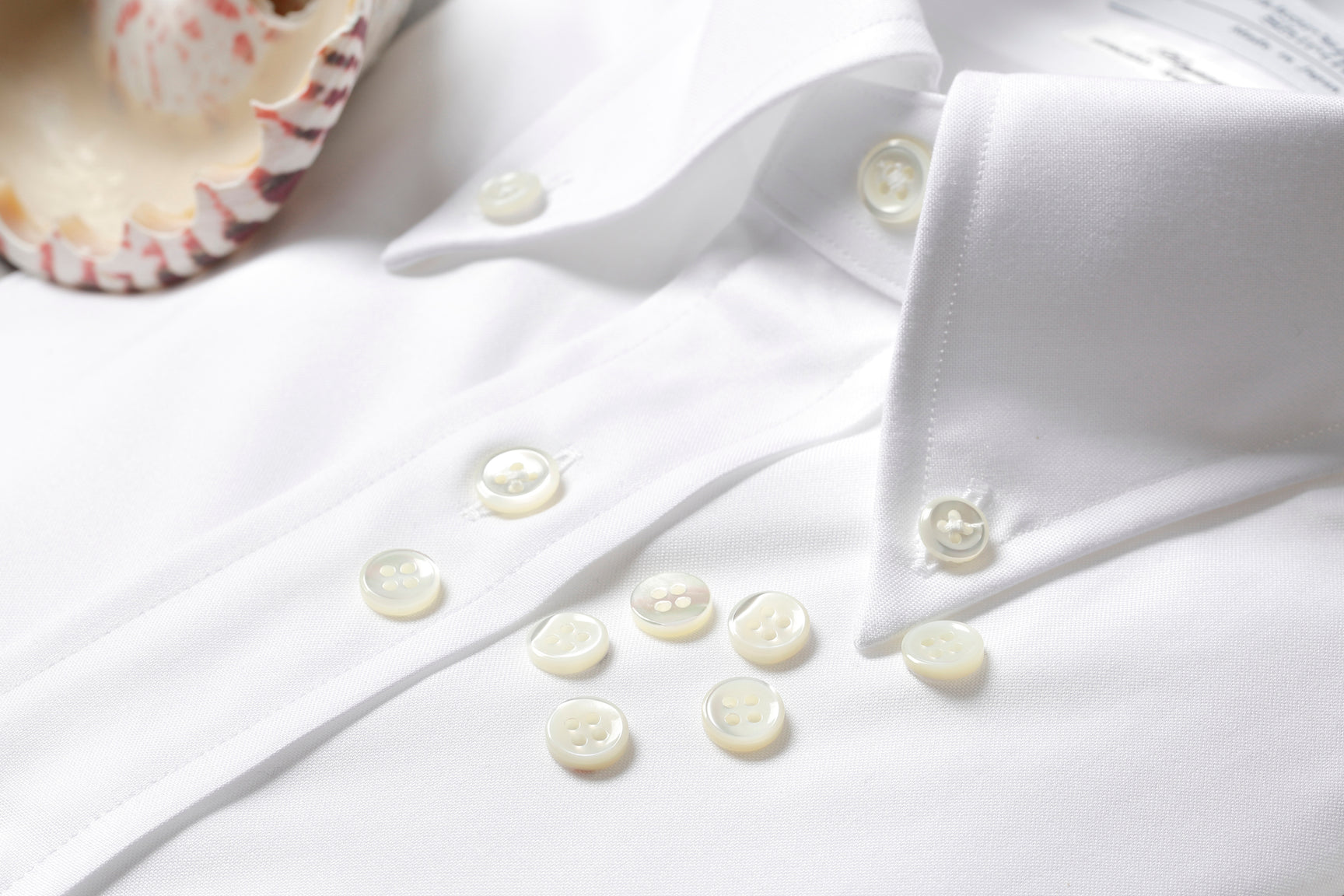 White button-down shirt collar with shell buttons.