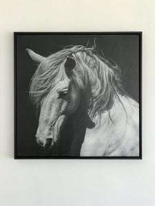 Black and White Horse Wall Art