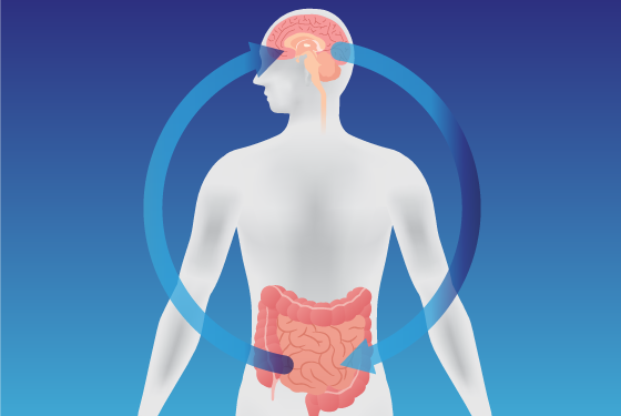 Serotonin Brain Gut connection