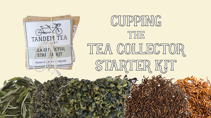 Cupping Each Tea Type with the Tea Collector Starter Kit