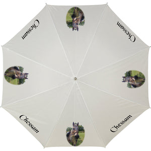 Personalised photo-umbrella