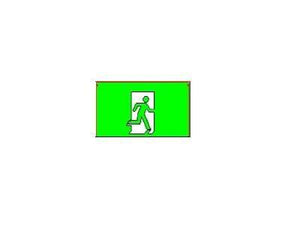 SELS EXIT/Emergency Running Man Type M SELS Weather Proof Surface Mounted Exit Sign (SELS-1230-WP) | Delight.com.sg