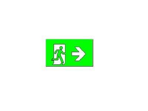 SELS EXIT/Emergency Running Man Type R SELS Weather Proof Surface Mounted Exit Sign (SELS-1230-WP) | Delight.com.sg