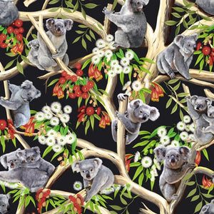 Koalas - Gumtree Friends - Kennards - 9107A