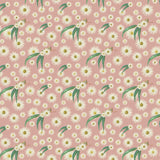 small  White Blossom Flower on pink salmon  background green leaves