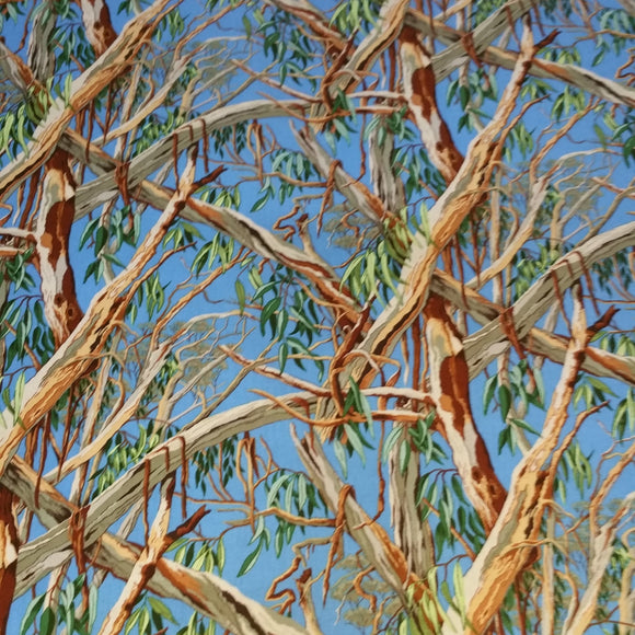 Iconic Australian Gumtree - Blue - by Nutex