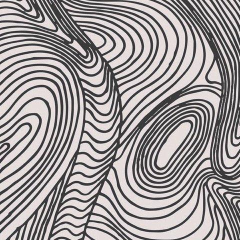 White background with Black Swirling lines