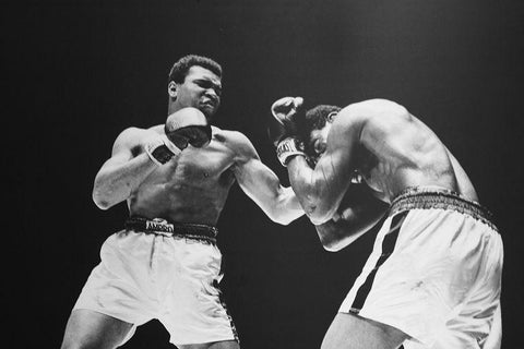 Ali Muhammad Boxer Art Silk Canvas Wall Poster Boxing Legend Printings 26 - 20x30 inch (50x75cm)