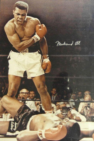 Ali Muhammad Boxer Art Silk Canvas Wall Poster Boxing Legend Printings 07 - 20x30 inch (50x75cm)