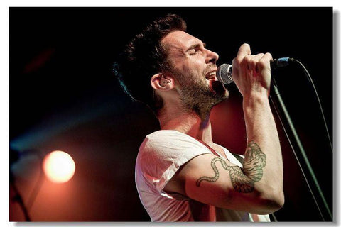 Maroon 5 Silk Wall Poster music Star decorations Poster for wall HD Large Modern Home bedroom decor Printings Adam Levine 15 - 32x48 inch (80x120cm)