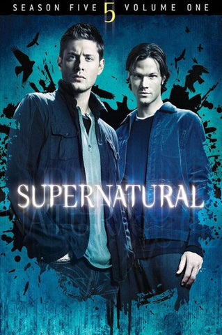 Supernatural TV Series Silk Canvas Wall Posters HD Large Modern Home Living Room Decor Movie Comic Music Posters Decroation 13 - 32x48 inch (80x120cm)