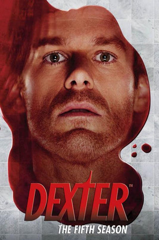 Dexter 8 TV Series Silk Canvas Wall Posters HD Large Modern Home Living Room Decor Movie Comic Music Posters Decroation 08 - 32x48 inch (80x120cm)