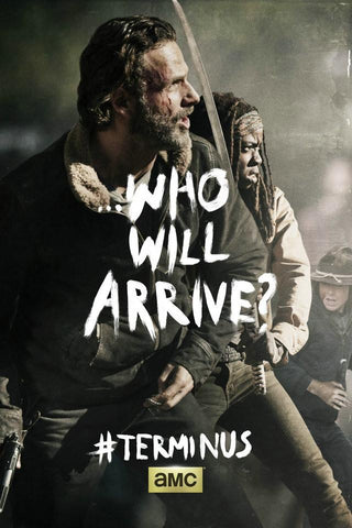 New The Walking Dead TV Show Series Silk Poster Art Print Home Bedroom Decor Who Will Survive 02 - 32x48 inch (80x120cm)