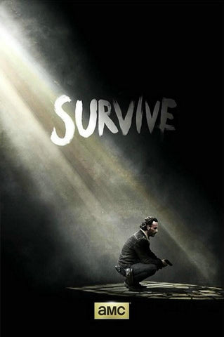 New The Walking Dead TV Show Series Silk Poster Art Print Who Will Survive 06 - 32x48 inch (80x120cm)