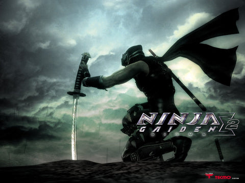 Ninja Gaiden Sigma 2 PS3 Game Game Silk Wall Art Poster Print - 32x48 inch (80x120cm)