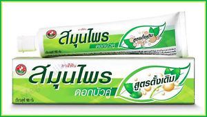 100g. Twin Lotus Original Herbal Toothpaste Natural Herbs Clean Your Teeth Gum