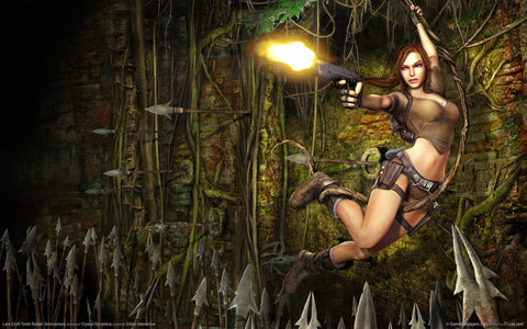 Tomb Raider PC Game Game Silk Wall Art Poster Print - 13x20 inch (33x50cm)