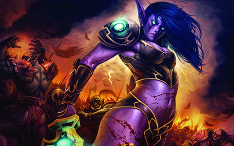 World of Warcraft Lady Game Silk Wall Art Poster Print - 13x20 inch (33x50cm)