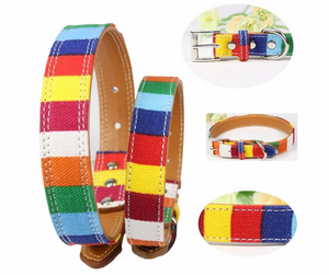 Rainbow Stripe Adjustable Pet Collar (Different Sizes Available)