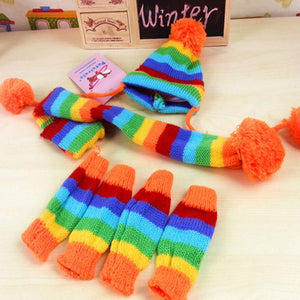 Cute Rainbow Winter Clothes For Small Dog