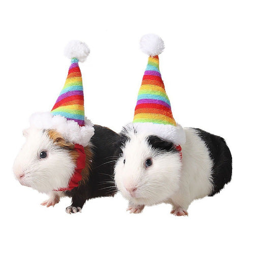 Pet Hamster Christmas Rainbow Hat