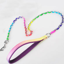 Rainbow Dog Chain