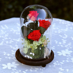 Zipi Glasses Cover Preserved Fresh Flower Wedding Decoration Birthday Christmas Valentine Gift Home Hotel Decoration Wholesale