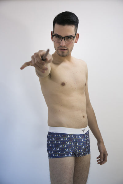 The magic boxer of Harry Potter - Geek Skin - Geek Underwear